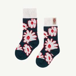 Snail 美麗諾羊毛中筒厚襪